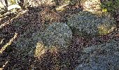 Trail Walk SAINT-GENEST-LERPT - 2020 03 12 St Genest Lerpt Condamine - Photo 2
