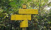 Trail Walk ORCIVAL - La chaine des Puys - Photo 6