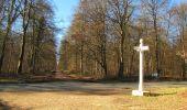 Trail Walk PIERREFONDS - en forêt de Compiègne_24_Tournantes sur le Voliard et sur la Fortelle_chaussée Brunehaut - Photo 75