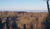 Trail Walk SARZEAU - Rc56Sarzeau-01-PointeDeDuer-20190224 - Photo 3