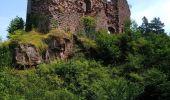 Randonnée Marche OTTROTT - Boucle Sainte Odile & mur Paien - Photo 16