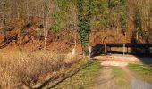 Trail On foot VIEUX-MOULIN - en forêt de Compiègne_23_la Grotte des Ramoneurs_le Mont Berny - Photo 37
