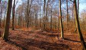 Trail Walk PIERREFONDS - en forêt de Compiègne_24_Tournantes sur le Voliard et sur la Fortelle_chaussée Brunehaut - Photo 38