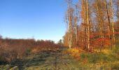 Trail Walk SAINT-JEAN-AUX-BOIS - en forêt de Compiègne_33_12_2019_les Tournantes de l'étang Saint-Jean et des Prés Saint-Jean - Photo 96