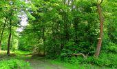 Randonnée Marche COYOLLES - en forêt de Retz_78_les rayons du Rond Capitaine - Photo 49