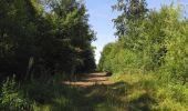 Randonnée Marche LACROIX-SAINT-OUEN - en forêt de Compiègne_35_la Croix Saint-Sauveur_le Ru du Goderu - Photo 97