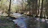 Randonnée Marche Libin - REDU ... vallée de la Lesse par le pont des Barbouillons. - Photo 4