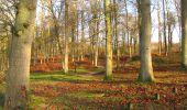 Randonnée A pied VILLERS-COTTERETS - le GR11A  dans la Forêt de Retz  - Photo 32