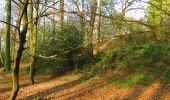 Randonnée A pied VILLERS-COTTERETS - le GR11A  dans la Forêt de Retz  - Photo 118