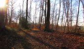 Trail On foot VIEUX-MOULIN - en forêt de Compiègne_23_la Grotte des Ramoneurs_le Mont Berny - Photo 108