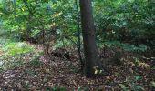Randonnée Chasse Tancarville - Tancarville  - Photo 11