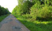 Randonnée Marche COYOLLES - en forêt de Retz_78_les rayons du Rond Capitaine - Photo 123