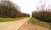 Randonnée A pied VILLERS-COTTERETS - le GR11A  dans la Forêt de Retz  - Photo 6