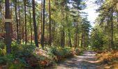 Trail Walk LONGPONT - en forêt de Retz_29_Longpont_la cave du Diable_A - Photo 36
