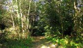 Trail Walk DAMPLEUX - en forêt de Retz_80_sur la Route Tortue et la Route Droite - Photo 37