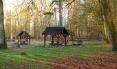 Trail On foot VIEUX-MOULIN - en forêt de Compiègne_23_la Grotte des Ramoneurs_le Mont Berny - Photo 130