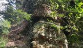 Trail Walk ALLARMONT - 2019-06-08 Marche Allarmont et ses rochers - Photo 16