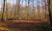 Trail On foot VIEUX-MOULIN - en forêt de Compiègne_23_la Grotte des Ramoneurs_le Mont Berny - Photo 92