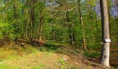 Randonnée Marche LONGPONT - en forêt de Retz_77_Longpont_Puiseux en Retz_AR - Photo 106