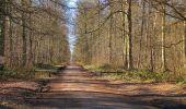 Trail Walk PIERREFONDS - en forêt de Compiègne_24_Tournantes sur le Voliard et sur la Fortelle_chaussée Brunehaut - Photo 74