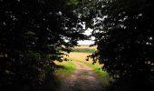 Randonnée Marche HARAMONT - en forêt de Retz_79_08_2019_vers Taillefontaine et Retheuil par les lisières - Photo 83