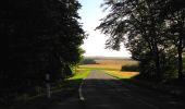 Randonnée Marche HARAMONT - en forêt de Retz_79_08_2019_vers Taillefontaine et Retheuil par les lisières - Photo 14