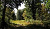 Trail Walk DAMPLEUX - en forêt de Retz_80_sur la Route Tortue et la Route Droite - Photo 2