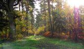 Randonnée Marche SAINT-JEAN-AUX-BOIS - en forêt de Compiègne_19_le Puits d'Antin_les Mares St-Louis_La Muette - Photo 75