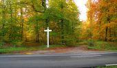 Randonnée Marche SAINT-JEAN-AUX-BOIS - en forêt de Compiègne_19_le Puits d'Antin_les Mares St-Louis_La Muette - Photo 95