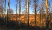 Trail Walk PIERREFONDS - en forêt de Compiègne_24_Tournantes sur le Voliard et sur la Fortelle_chaussée Brunehaut - Photo 111