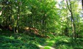 Randonnée Marche HARAMONT - en forêt de Retz_79_08_2019_vers Taillefontaine et Retheuil par les lisières - Photo 16