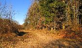 Trail Walk RETHEUIL - en forêt de Retz_76_dans les forêts de Retz et de Compiègne - Photo 136