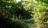 Trail Walk DAMPLEUX - en forêt de Retz_80_sur la Route Tortue et la Route Droite - Photo 124
