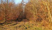 Trail Walk RETHEUIL - en forêt de Retz_76_dans les forêts de Retz et de Compiègne - Photo 9