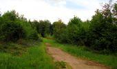 Randonnée Marche COYOLLES - en forêt de Retz_78_les rayons du Rond Capitaine - Photo 148