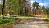 Randonnée A pied VILLERS-COTTERETS - le GR11A  dans la Forêt de Retz  - Photo 53