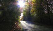 Randonnée Marche SAINT-JEAN-AUX-BOIS - en forêt de Compiègne_32_11_2019_les Tournantes de la Muette et sous la Tête Saint-Jean - Photo 181
