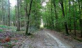 Trail Walk DAMPLEUX - en forêt de Retz_80_sur la Route Tortue et la Route Droite - Photo 31