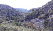 Randonnée Marche ROQUEVAIRE - Garlaban au départ de Lascours  - Photo 20