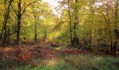 Randonnée Marche SAINT-JEAN-AUX-BOIS - en forêt de Compiègne_19_le Puits d'Antin_les Mares St-Louis_La Muette - Photo 88