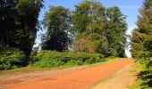 Randonnée Marche HARAMONT - en forêt de Retz_79_08_2019_vers Taillefontaine et Retheuil par les lisières - Photo 3