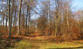 Trail On foot VIEUX-MOULIN - en forêt de Compiègne_23_la Grotte des Ramoneurs_le Mont Berny - Photo 21