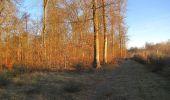 Trail Walk SAINT-JEAN-AUX-BOIS - en forêt de Compiègne_33_12_2019_les Tournantes de l'étang Saint-Jean et des Prés Saint-Jean - Photo 198