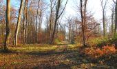 Trail Walk SAINT-JEAN-AUX-BOIS - en forêt de Compiègne_33_12_2019_les Tournantes de l'étang Saint-Jean et des Prés Saint-Jean - Photo 65