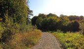 Trail Walk DAMPLEUX - en forêt de Retz_80_sur la Route Tortue et la Route Droite - Photo 146