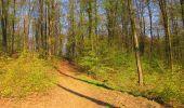 Randonnée A pied VILLERS-COTTERETS - le GR11A  dans la Forêt de Retz  - Photo 102