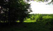 Randonnée Marche COYOLLES - en forêt de Retz_78_les rayons du Rond Capitaine - Photo 87