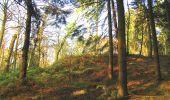 Randonnée A pied VILLERS-COTTERETS - le GR11A  dans la Forêt de Retz  - Photo 120