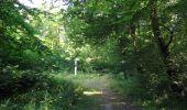 Randonnée Marche LACROIX-SAINT-OUEN - en forêt de Compiègne_35_la Croix Saint-Sauveur_le Ru du Goderu - Photo 23