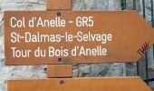 Randonnée Marche SAINT-ETIENNE-DE-TINEE - col d'anelle - Photo 7